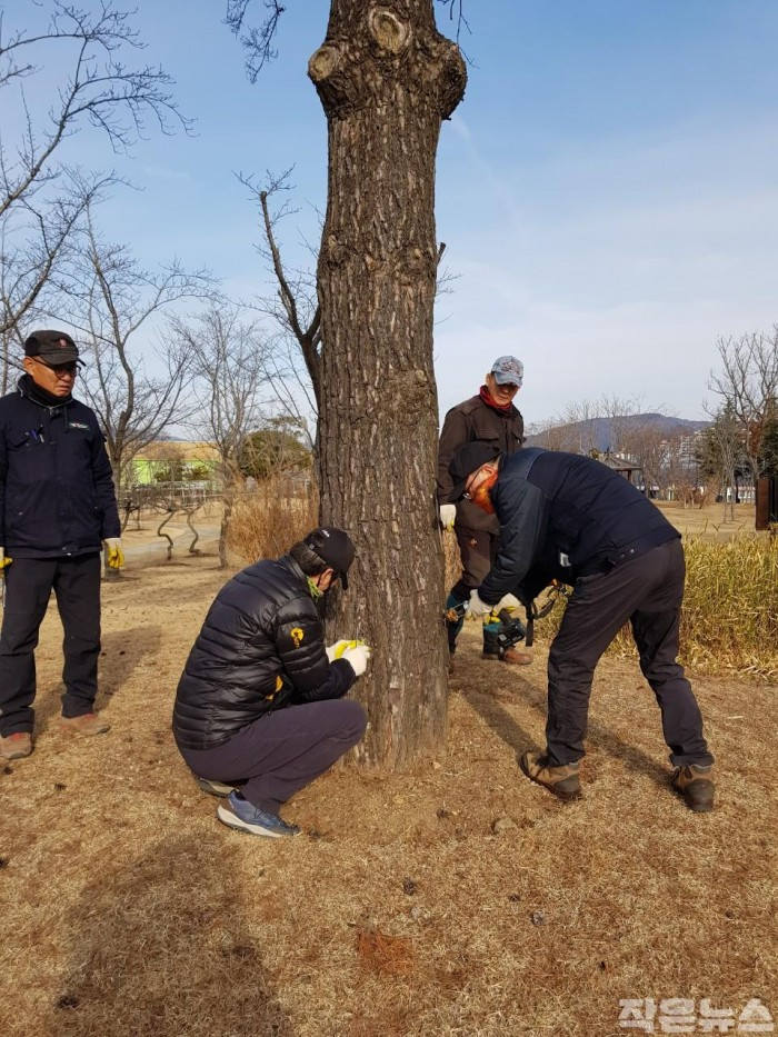 2. 재선충 예방나무주사2.JPG
