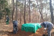 순천시-순천국유림관리소 합동 소나무재선충병과 전쟁 선포