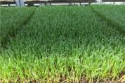 광양시, 친환경농업 지원사업 일부 변경