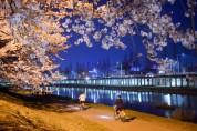 순천시, 벚꽃 개화 전 동천 야간경관조명 점검